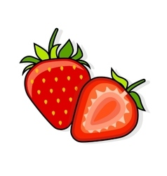 Strawberry on a white background vector image vector image