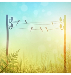 Rural Landscape Meadow vector image