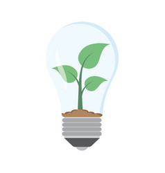 Green plant in bulb vector