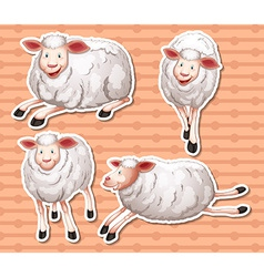 Sheeps set vector image vector image
