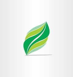stylized green leaf design element vector image