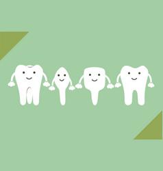 Tooth type - incisor canine premolar molar vector