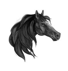 Black horse sketch of arabian mare vector