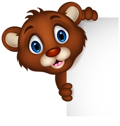 cute baby brown bear cartoon posing with blank sig vector image