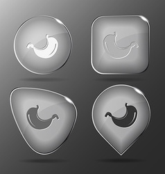 Stomach glass buttons vector