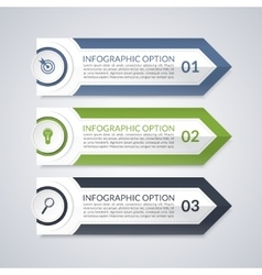Infographic design arrow options template vector