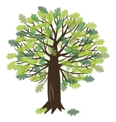 With oak tree vector