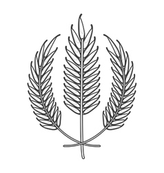 Wheat spike icon design vector