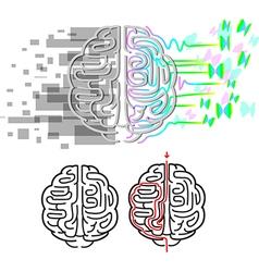 Brain hemispheres maze vector image