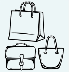 Paper bag and handbag vector image