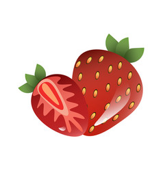 red berry strawberry and a half of strawberry vector image vector image