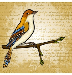 Vintage card with cartoon bird vector image vector image