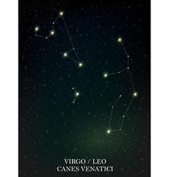 Virgo leo and canes venatici constellation vector