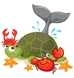 Different type of sea animals vector