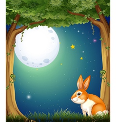 A bunny at the forest under the bright fullmoon vector