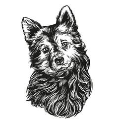dog pet hand drawn realistic vector image vector image