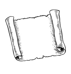 sketch of ancient scroll vector image
