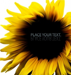 sunflower background frame vector image vector image