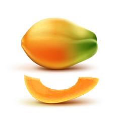 Whole and slised papaya vector