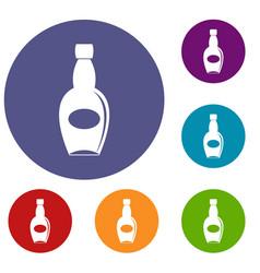 big bottle icons set vector image
