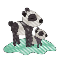 cartoon panda mom with cub over grass in colored vector image