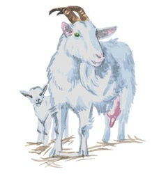 Goats watercolor vector