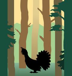 grouse in the forest vector image