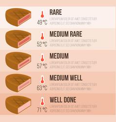 Info graphics steak and temperature vector