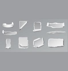 Blank torn paper set vector