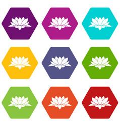 lotus flower icon set color hexahedron vector image
