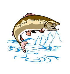 Trout Fish Jumping vector image