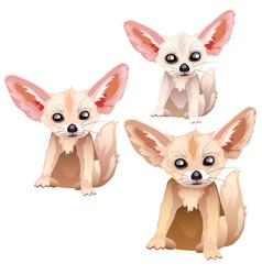 sandy foxes of different ages stages of growth vector image vector image