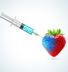Strawberry with GMO vector image