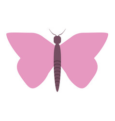 Beautiful buttefly symbol vector