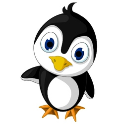 cute baby penguin cartoon posing vector image