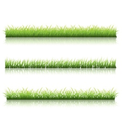 Green grass line vector image vector image
