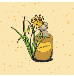 Handdrawn - health and nature vector