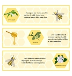 Honey set for banner vector image vector image