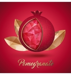 Ripe pomegranate fruit and three golden leaves vector image