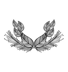 rustic leaves with feathers decoration vector image
