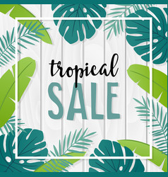 Tropical sale template or banner with hand drawn vector