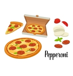 Whole pizza and slices of pizza pepperoni in open vector