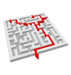 labyrinth maze puzzle vector image vector image