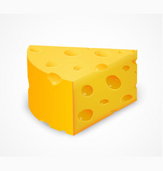 Piece of cheese isolated on white vector