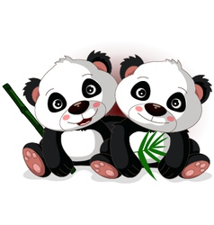 Cute couple cartoon panda vector
