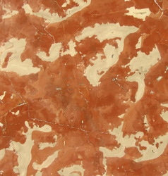 Brown marble texture background vector
