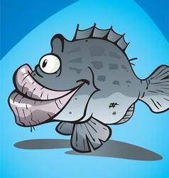 COD FISH vector image