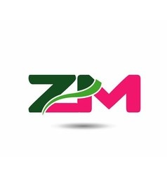 Alphabet Z and N letter logo vector image vector image