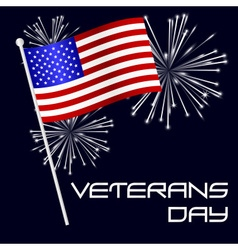 american veterans day celebration with flag and vector image vector image