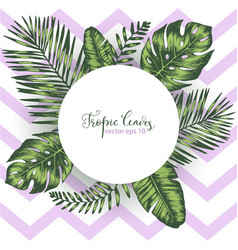 geometric background with tropical leaves vector image vector image